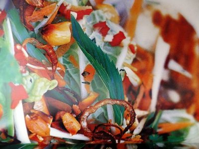 How to make Vietnamese salads? Vietnamese salad recipes and ingredient shared on our page.