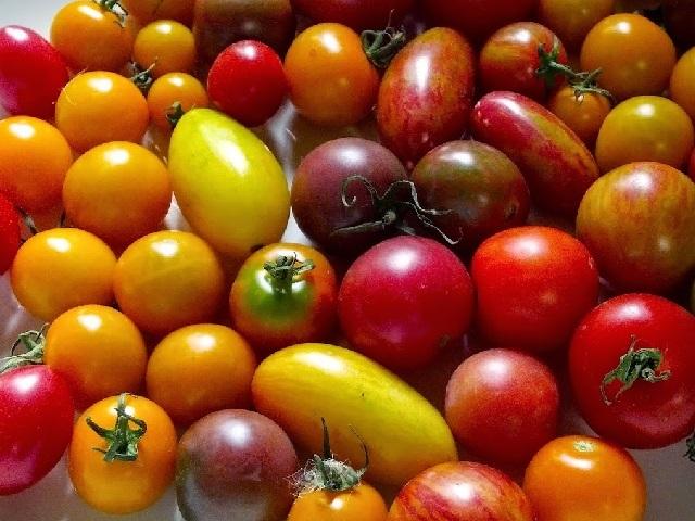 Tomato, fresh mint and lemon salad