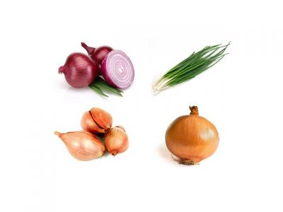 Onion health benefits, key natural values, therapeutic properties. How to make onion cooking & eating? Onion recipes shared on page.