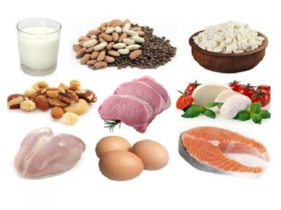 What is protein? What foods contain protein? Informations about proteins. We need many forms of protein for the structure and repair of cells, and to form hormones and enzymes.