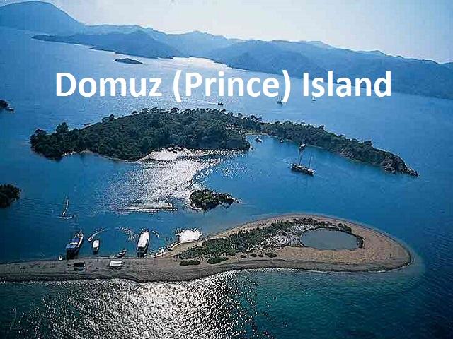 Domuz (Prince) Island